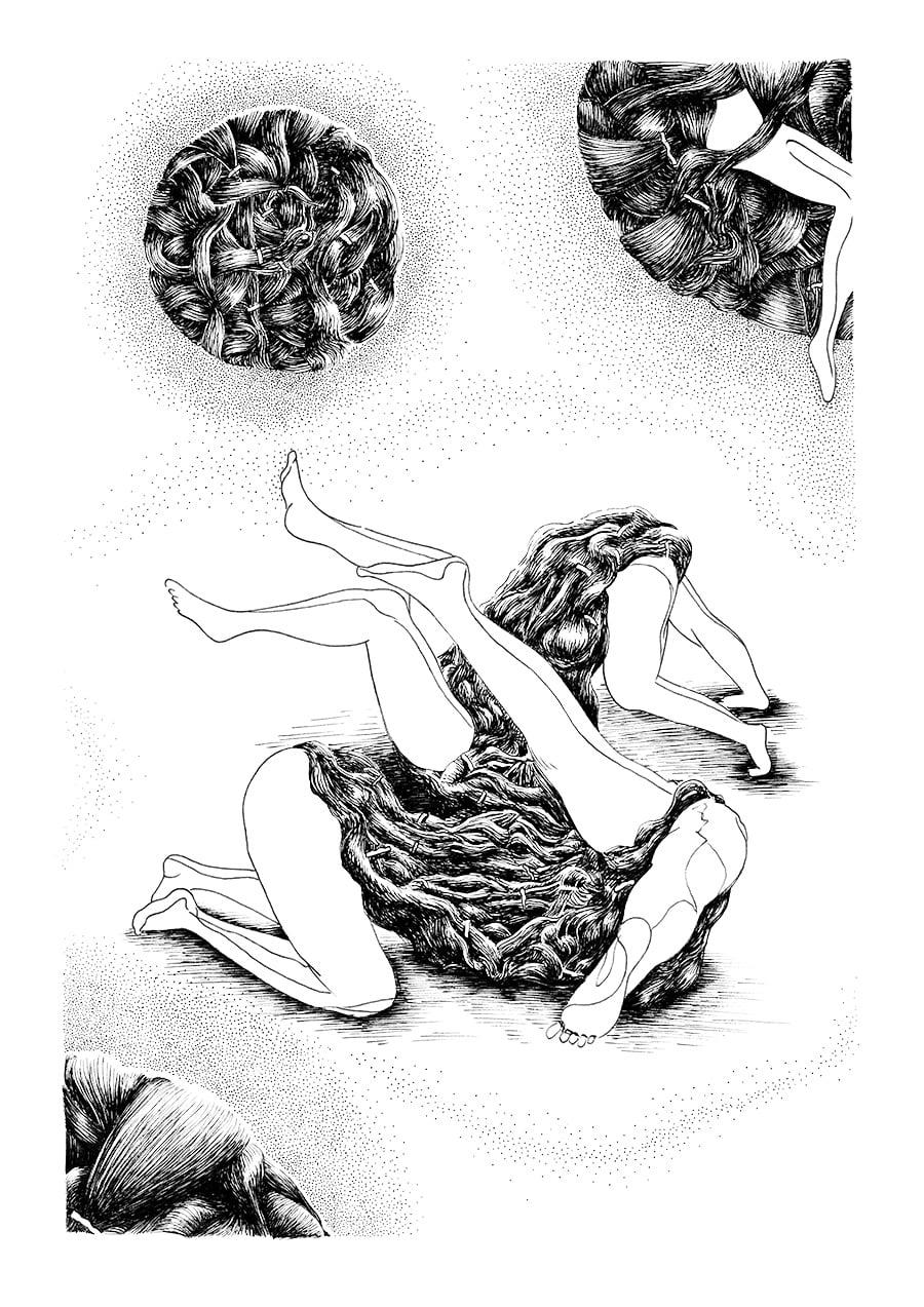 illustration capillaire dézoom